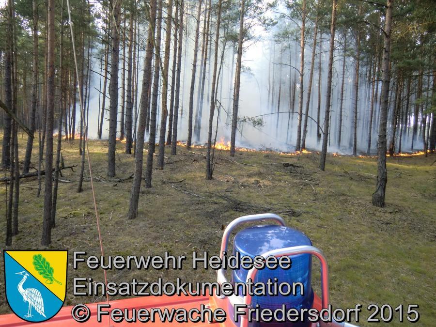 Einsatz 110/2015 5000m² Waldbodenbrand Senzig Körbiskruger Straße 05.07.2015