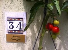 Sorge-Haus-Nr.34