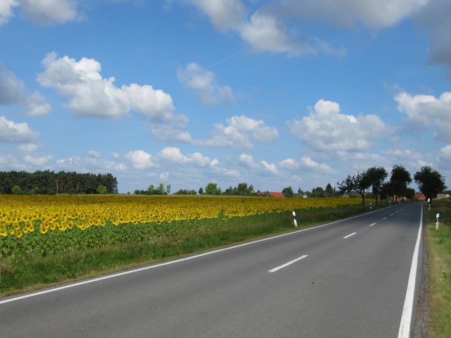 aus Richtung Kolochau