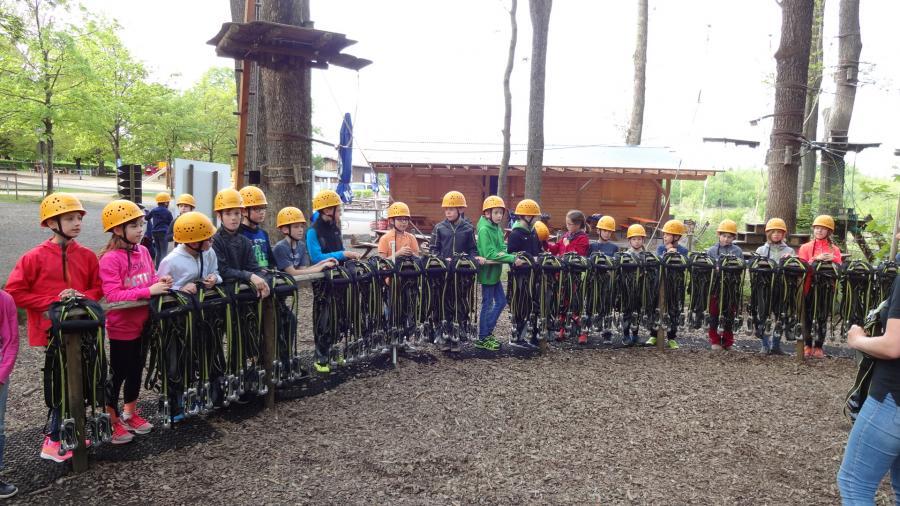 Kletterwald 1