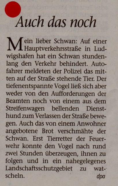 FW 2016.06.23 Mein lieber Schwan