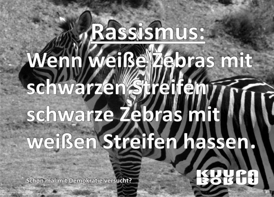 Zebras, Denkantoß 002