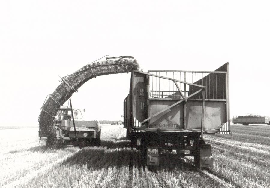 Landarbeit 1987