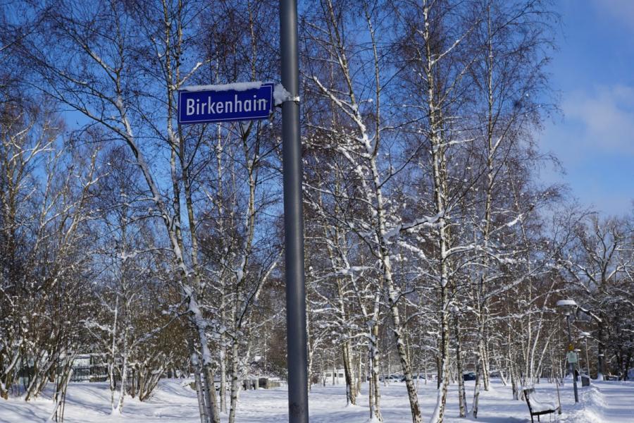 Urlaub am Birkenhain