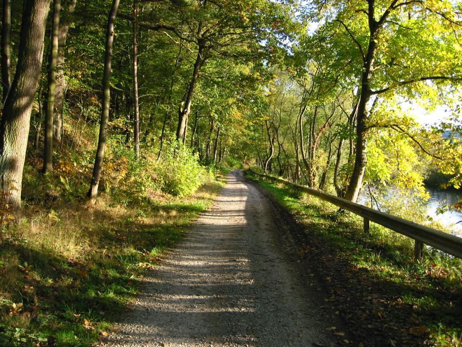 Grüne Oase an der Fulda