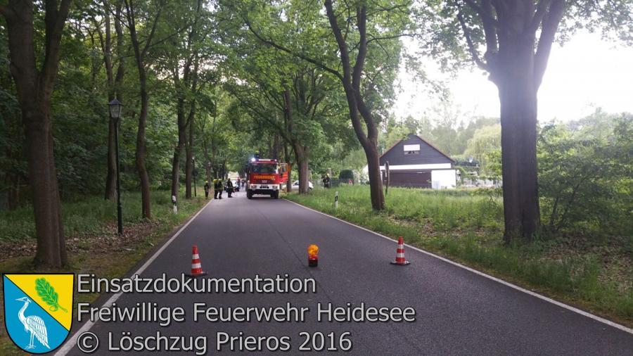 Einsatz 32/2016 | Ast droht auf Straße zu stürzen | Kolberg Storkower Straße 20.05.2016