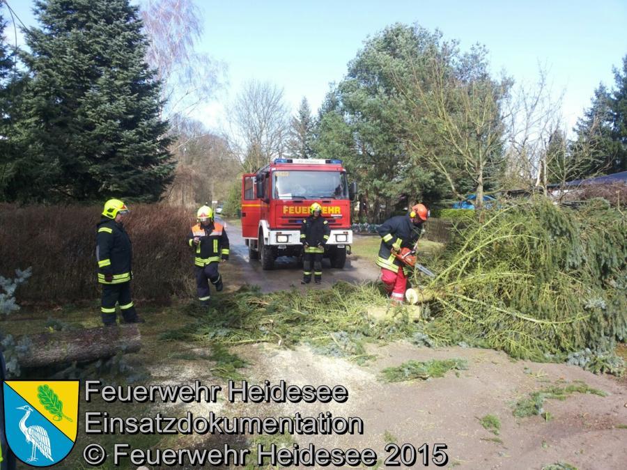 Einsatz 35/2015 2 Bäume über Straße Streganz Ziegelei 31.03.2015