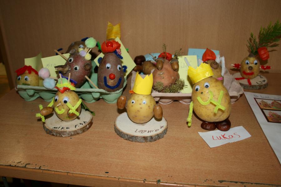 Kartoffelprojekt 5
