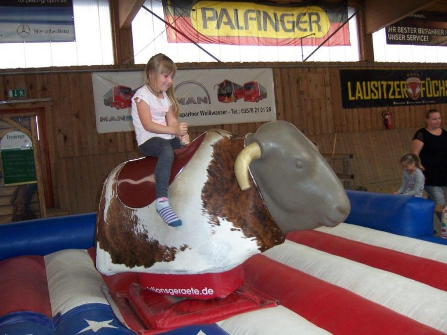 Bull Riding in Trebendorf