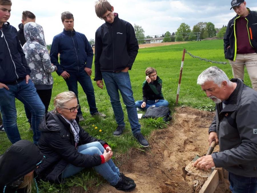 Untersuchung des Bodenprofils
