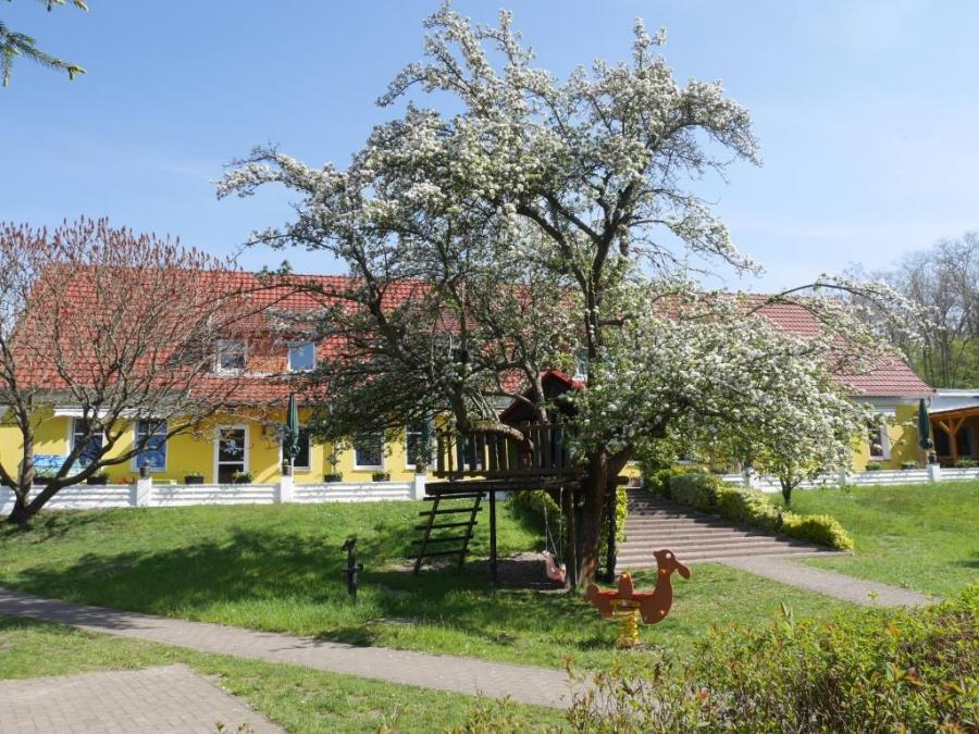 Baumhaus 1