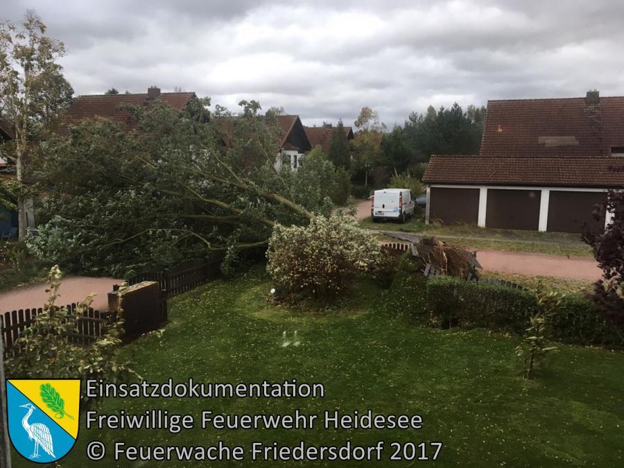 Einsatz 192/2017 | Baum auf Straße | Wolzig Birkenweg | 05.10.2017