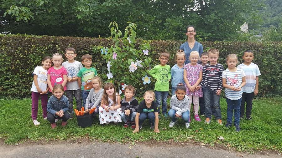 Baumpflanzung 4