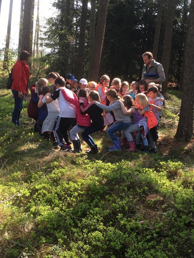 Baumpflanzaktion Mischwald April 2018