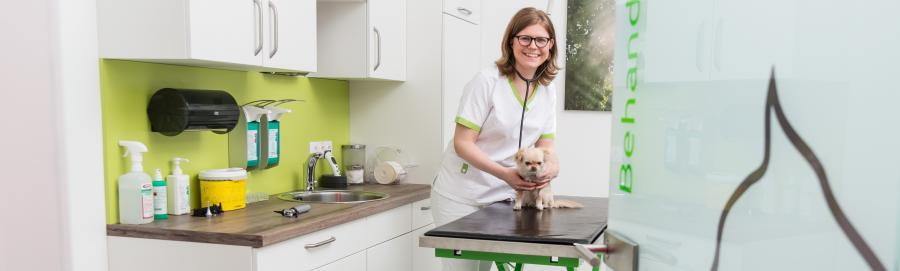 Elisabeth Zimpfer Tierärztin