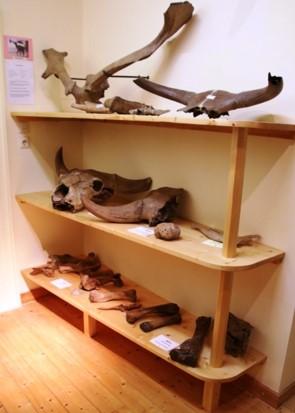 Archäologische Fundstücke 2