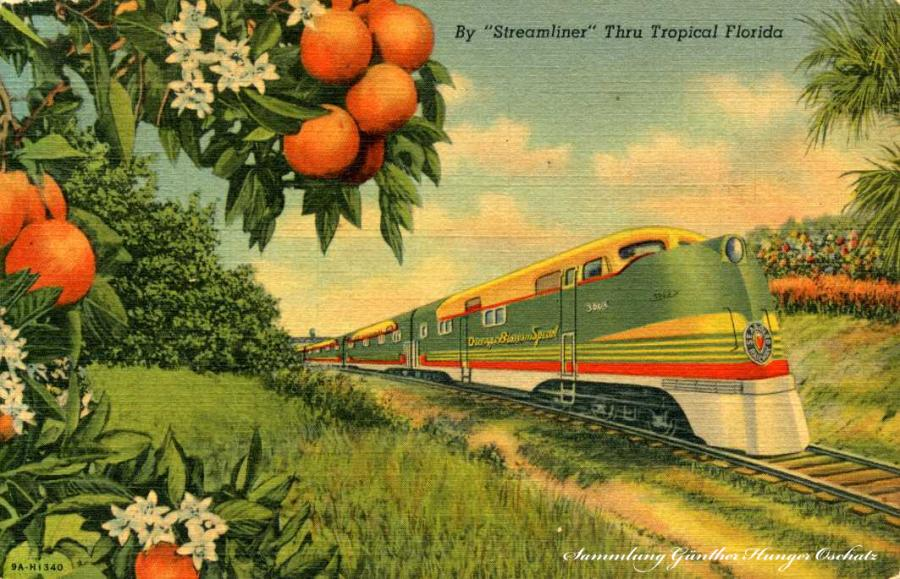By Streamliner Thru Tropical Florida