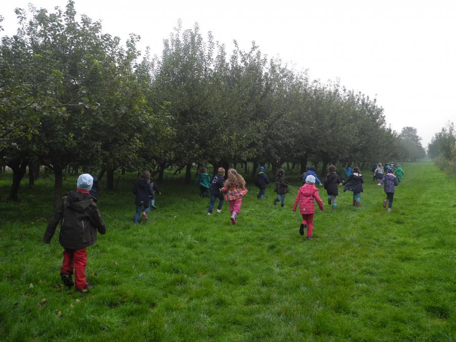 Apfelgarten 8