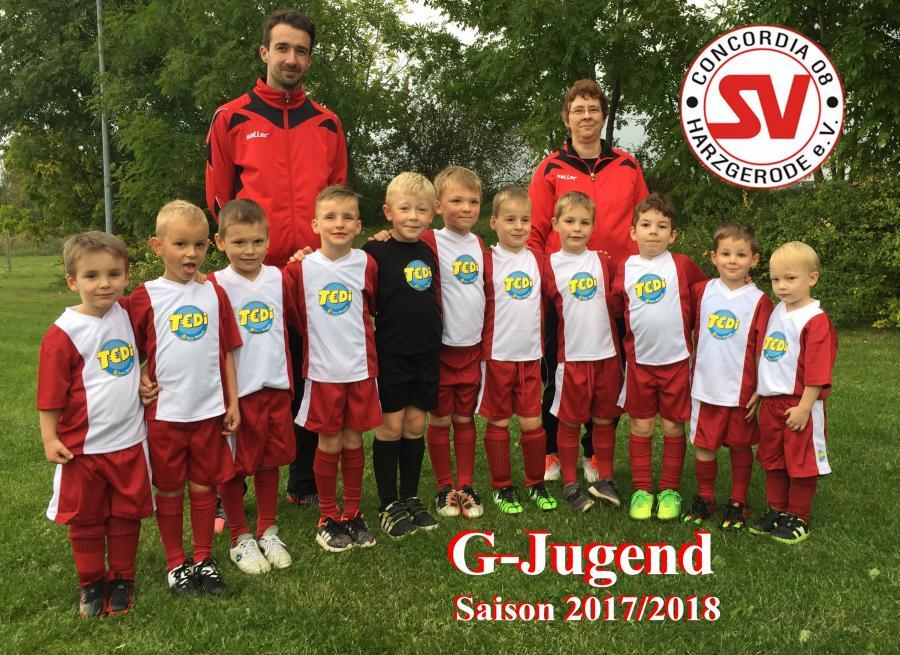 G-Jugend Saison 2017/2018
