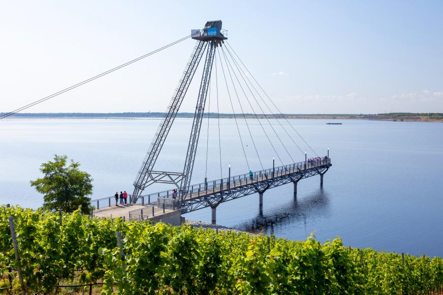 Seebrücke und Weinberg A. Franke Juli 2019