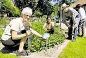 Garten-Team bei der Arbeit