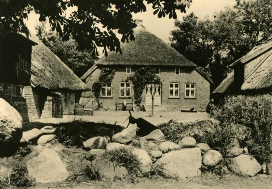 Alt Reddevitz Altes Bauernhaus 1964
