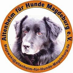 Altenheim für Hunde