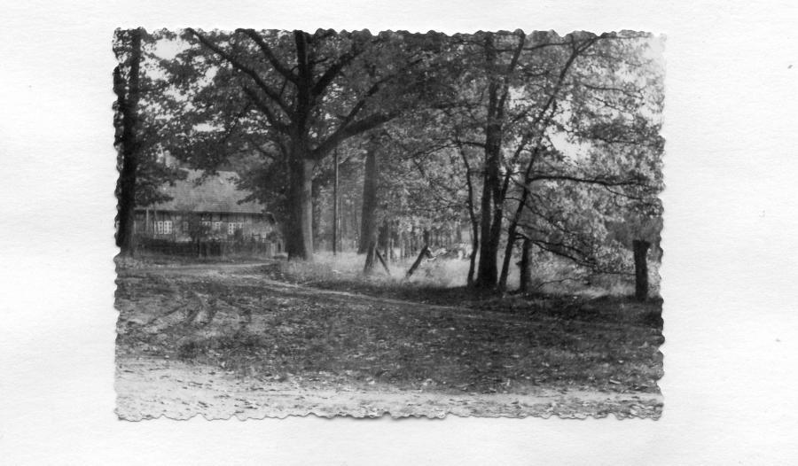 Alter Forsthof Wabel - Inspektorenhaus