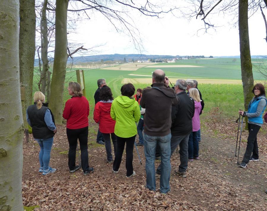 Am Kastell Pfarrhofen mit Blick Richtung Holzhausen und dortiges Kastell am Grauen Kopf