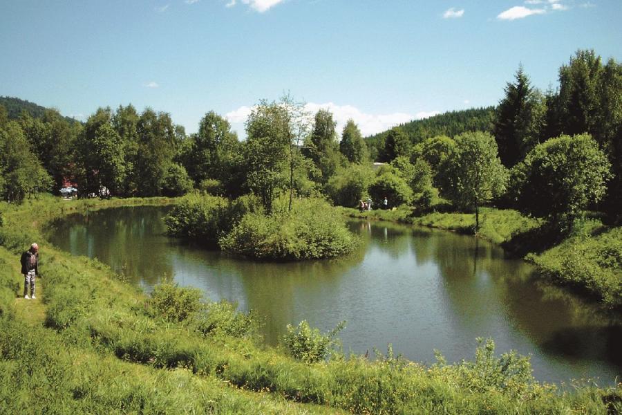 Fischweiher Arberhütte