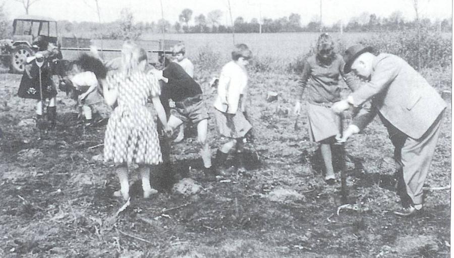Arbeit im Schulwald