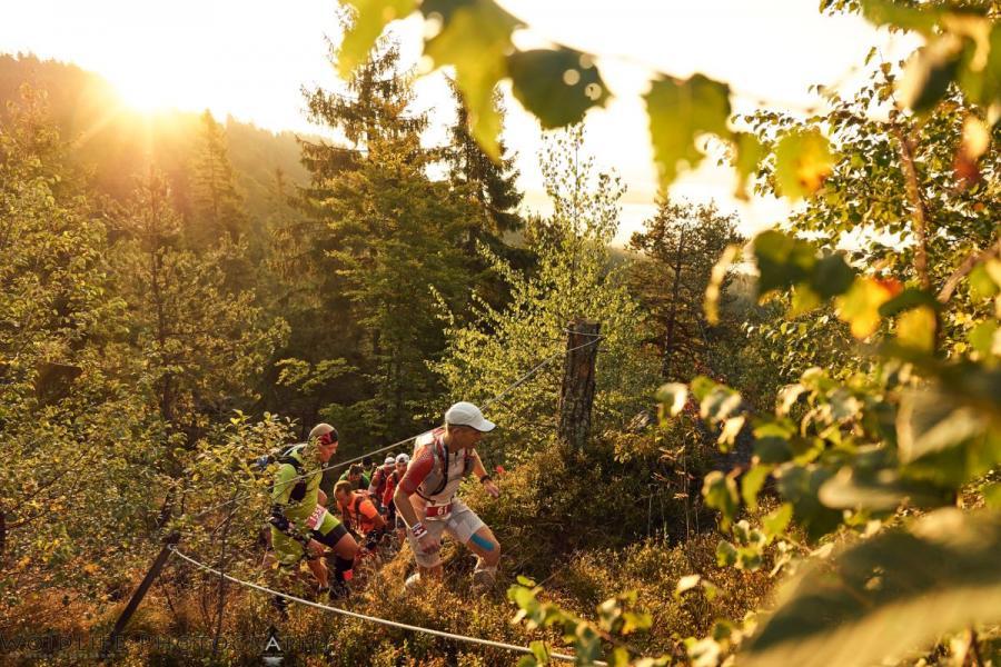 Arberland Ultra Trail