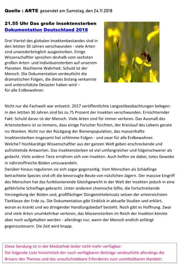 Das Große Insektensterben