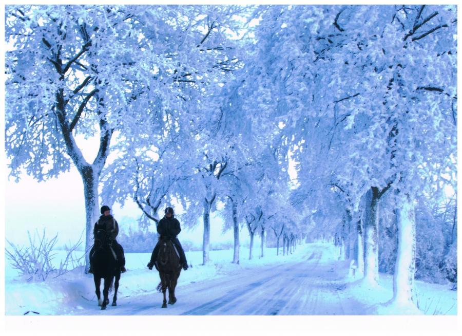 Ausritt im Winter (Horst Kumpf)