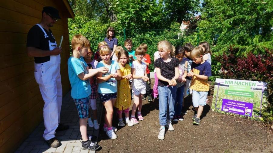 Gemeinsames Ansäen einer neuen bienenfreundlichen Blühfläche im Schulgarten