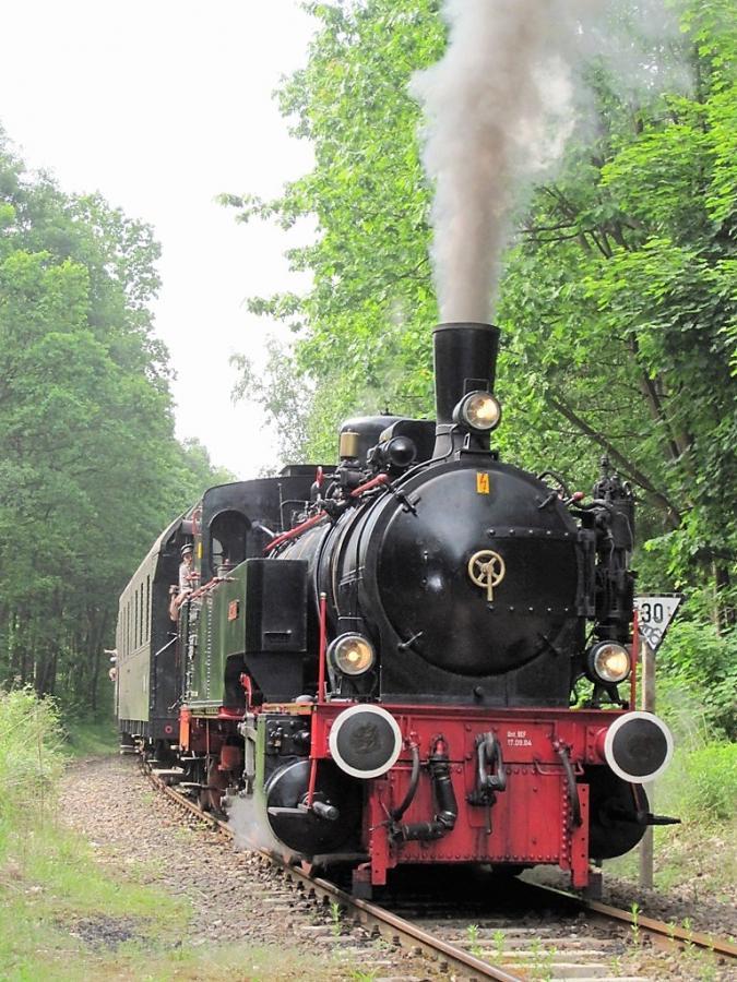 Heidekrautbahn_Dampflok