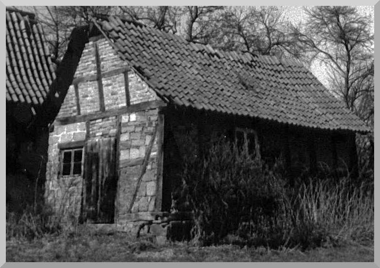 Backhaus 1995  Im Garten Unterdorfstr. 18