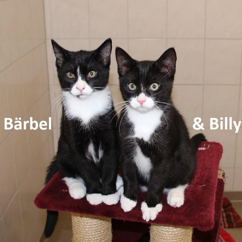 Bärbel & Billy