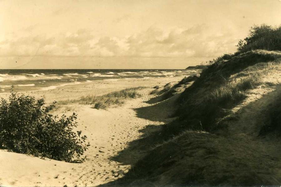 Bakenberg 1963