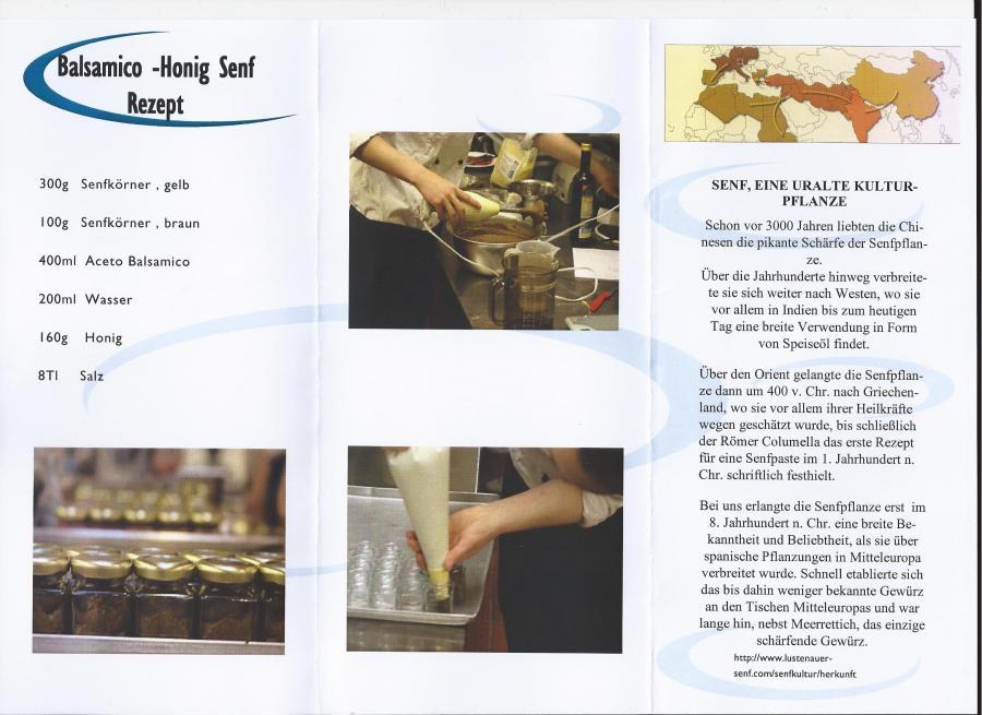 Balsamico-Honig-Senf 1