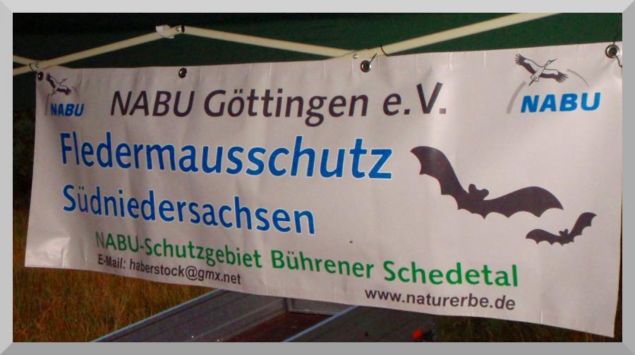 Banner Nabu