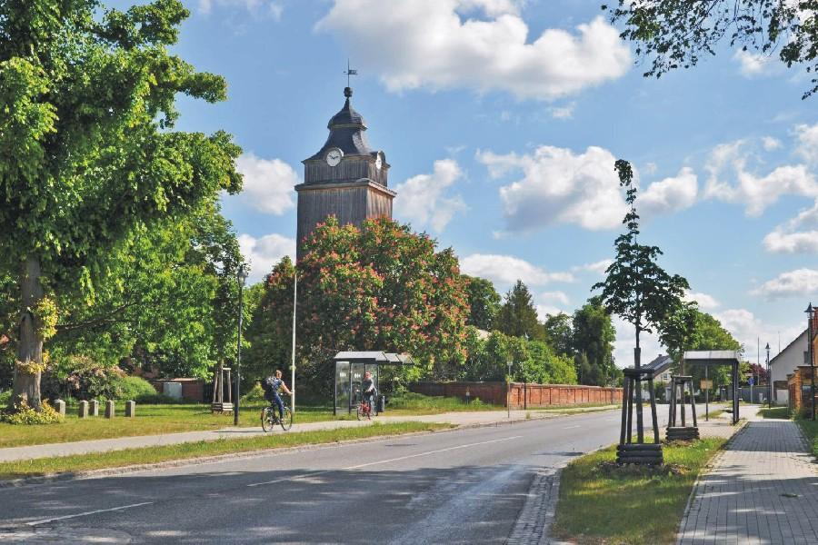 Bauen und Wohnen Baumschutz, Foto: Gerigk