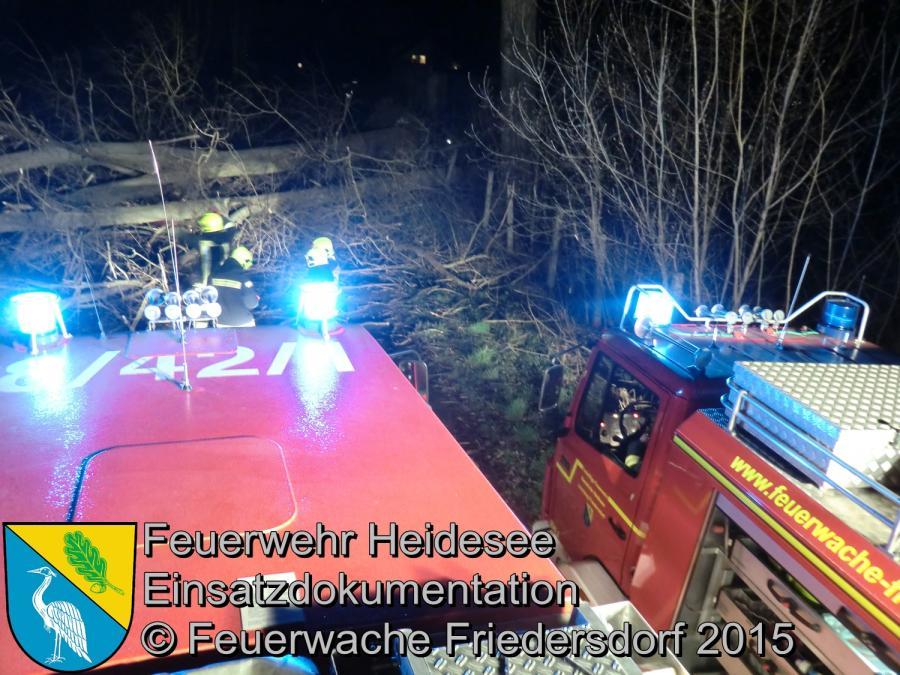 Einsatz 57/2015 2 Bäume über Straße Friedersdorf Weg nach Dannenreich 31.03.2015