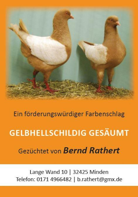 Bernd Rathert