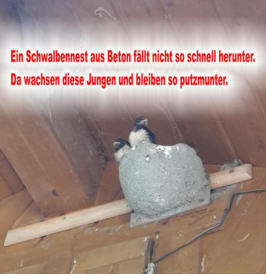 Das Nest aus Beton...