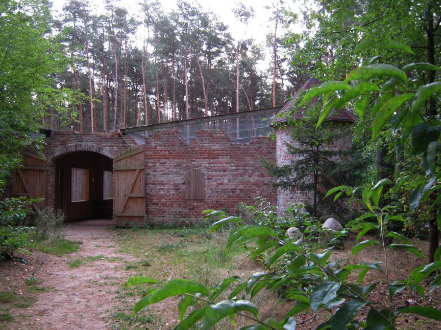Eulenburg 1