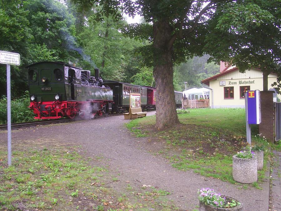 Dampflok am Bahnhof Güntersberge
