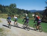 Bikergruppe 1