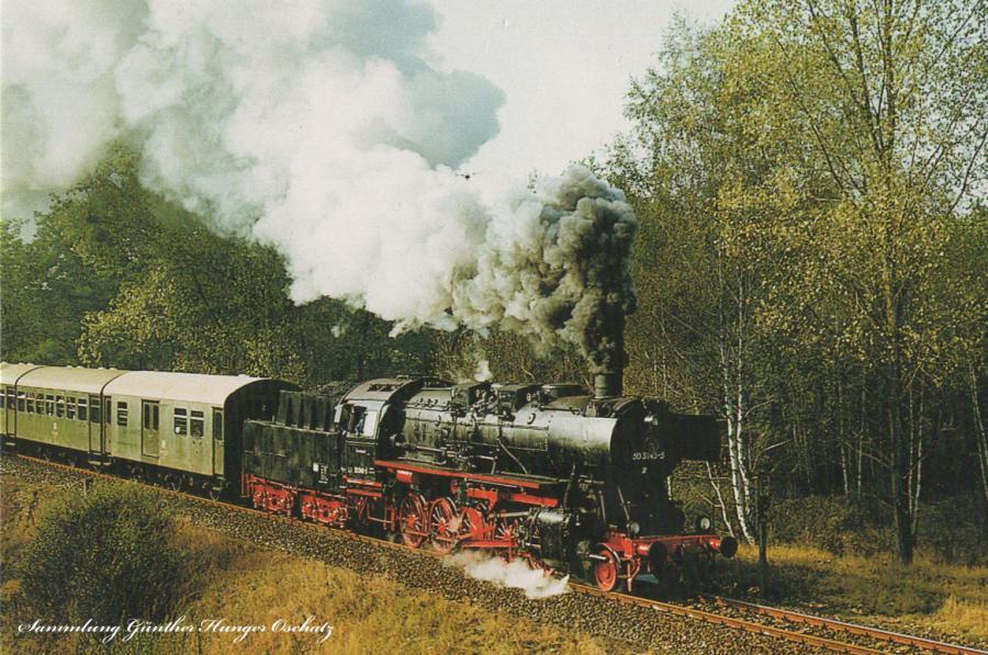 50 3145 (DR)mit einem Sonderzug des Deutschen Modelleisenbahnverbandes der DDR(DMV)bei Obersdorf(Strecke Strausberg-Müncheberg-Kietz)