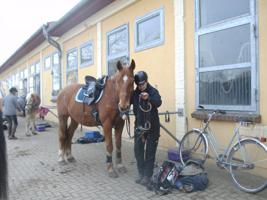 Osterritt - Travi